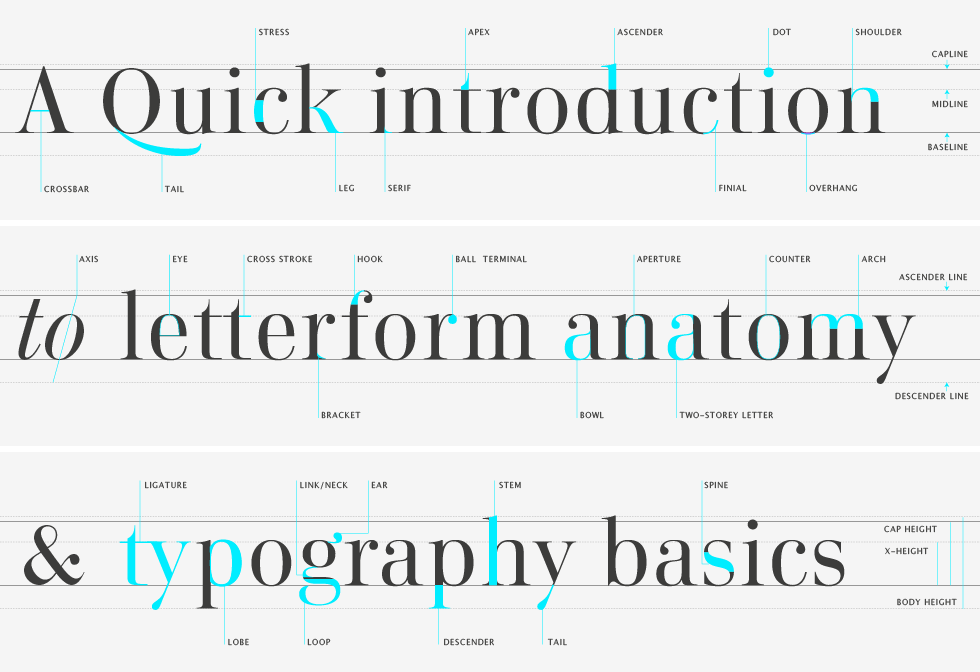 Typographer's Glossary by Playtype: Click through to view letterform anatomy, type classification, information on kerning, and other vital facts for typographers. This is a lot of information that I've always been curious about packaged neatly and comprehensively.