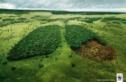 yoannmichaux:  Before it's too late, WWF Ad