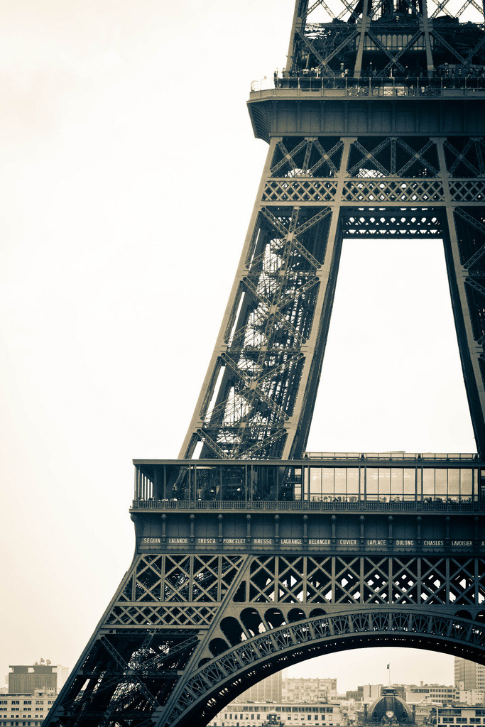 soggynipple:  Eiffel Tower (by TheLittleSwan)