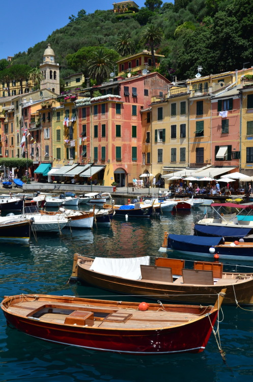 iggymogo:  should i like to spend some time here… where is here? (Portofino, Italy)
