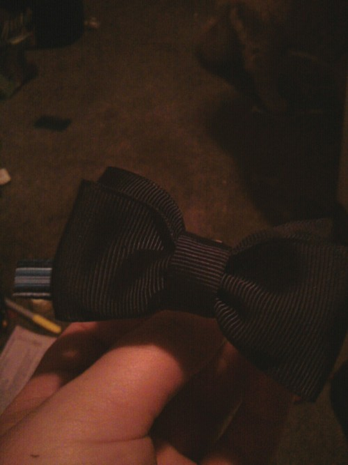Frankie's new bowtie! Its a little hard to take a picture of him wearing it, because he literally had a neck mane. So it kinda covers it up, but he's adorable!