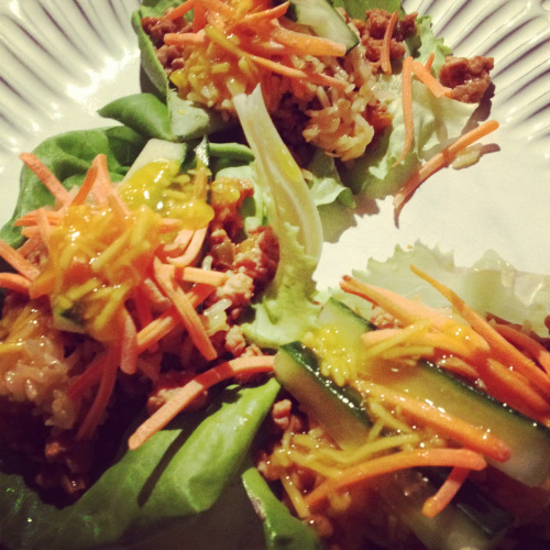 Sweet and sour turkey lettuce wraps with mango coconut rice, shredded carrot and julienned cucumber.   Even though last night's dinner required the use of a stove after a long, scorching hot day, it was well worth it! Mr. B and I are big lettuce wrap fans and will typically order as a healthy appetizer when dining out or ordering in (my father-in-law also makes a mean version…g-free for me, of course). Using lean ground turkey, brown rice and healthy veggies, this main course creation was delicious (if I do say so myself!) and incredibly filling!