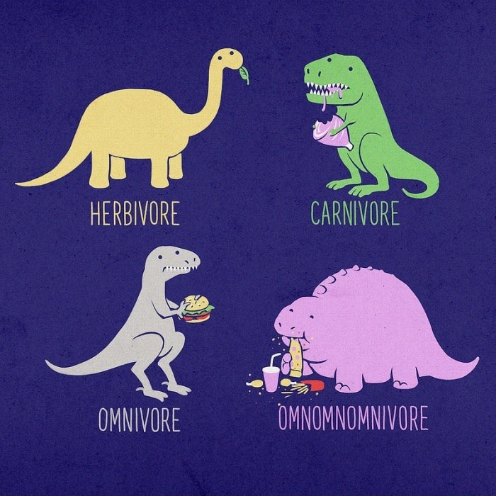 I'm the OMNOMNOMnivore :) haha