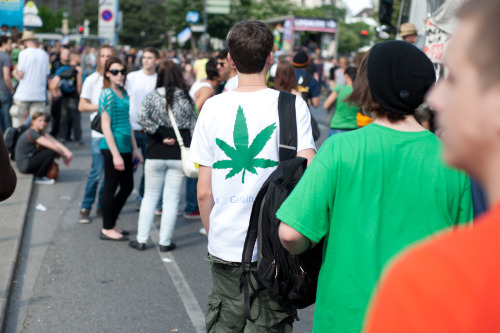 Million Marijuana March in Vienna 2012 Monty (c)