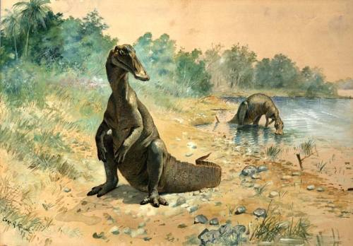 rhamphotheca:  dinosaurnews: Hadrosaurus by Charles R. Knight (via: wikimedia commons)