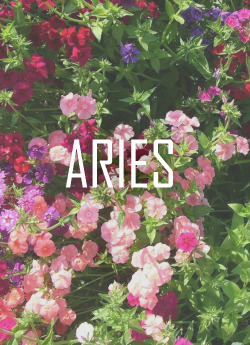 I'm not an Aries, buuut… references.