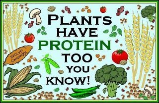 http://www.diseaseproof.com/archives/healthy-food-food-scoring-guide-plant-protein-and-micronutrients.html