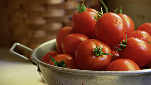 How to grow perfect tomatoesOrganic gardener Jordan Laio shares tomato-growing secrets.