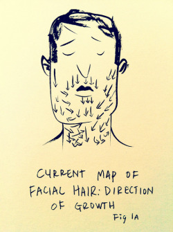 laughingsquid:  Current Map of Facial Hair by Ric Carrasquillo
