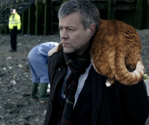 geniusbee:  barachiki:  Lestrade eventually had to stop bringing cats to crime scenes…   WOW THIS IS SUPER ADORABLE. I love Lestrade in that little scarf already, but with a big ol' cat on his shoulders, my god.  Plus he's looking at them with such a challenging expression. Like, Yeah I've brought a cat, you wanna fight about it?