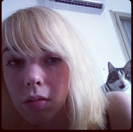 animalphotobombs:  MEOW!