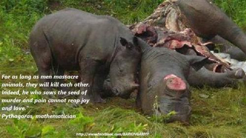clanarmstrong:  http://www.ipetitions.com/petition/foreverwild/    LET'S FIGHT BACK!!! WE CANNOT LET THIS KEEP HAPPENING!