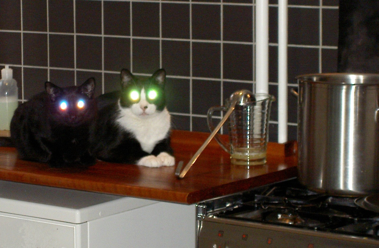 In your kitchen, cooking with lasers.