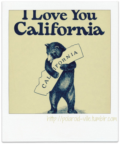 California.  http://polaroid-ville.tumblr.com/