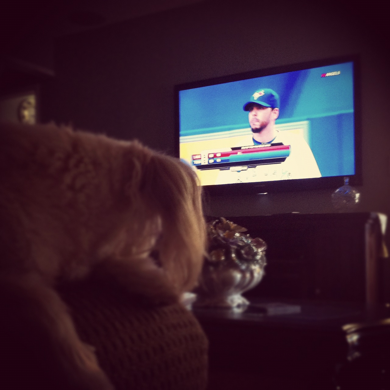 mustang-pilot:  Watching some baseball with man's best friend, Go Angels!…