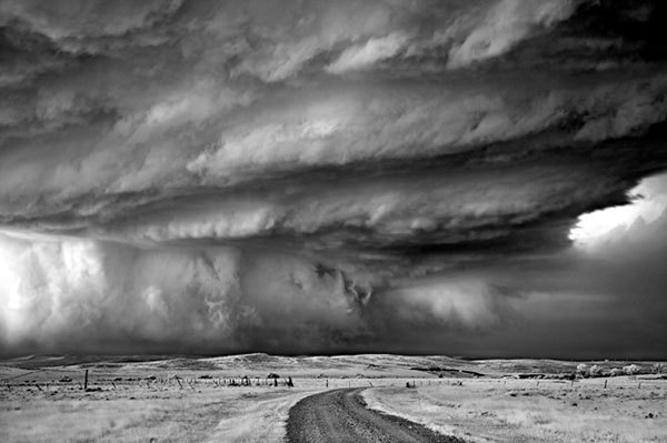 vanished:  Mitch Dobrowner