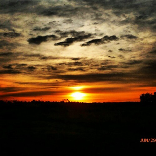 #sky #clouds #sun #sunset #trees #forest #field  (Taken with Instagram)