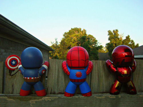 vyntic: Three of a Kind Photographers note: Spidey, Cap, and Iron Man were just hanging out talking on the fence all day today, enjoying the beautiful weather and amazing view. Photo by BeachBum013