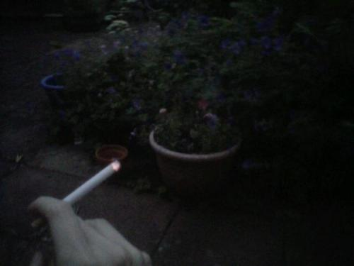 why did this pic of me smoking in my garden at 4am get 40 notes