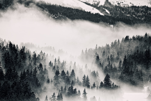 cloudily:  Above The Clouds II (by Philipp Klinger Photography)