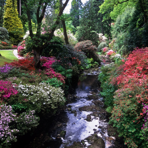 enchantedengland:     Bodnant Gardens in Conwy, Wales. If you love a garden, or landscape photography, or ANYTHING PRETTY AT ALL you must check out the flickr photostream of ukgardenphotos. Well I'm not saying you MUST. It was just a suggestion.