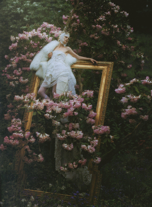 dinnerwithannawintour:  Stella Tennant by Tim Walker for Vogue Italia