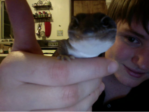 awkward-affection:  OMFG. GECKO SMILE. HOW FUCKING CUTE.and babe too. ♥