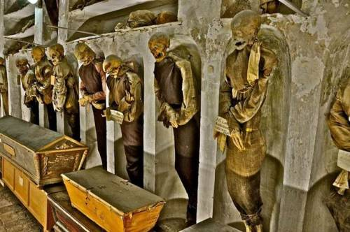 """Beneath the streets of Palermo is the Capuchin Catacombs, a ""human library"" of 8,000 embalmed bodies dressed in their funereal finest."""