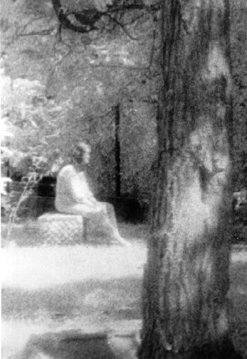 Ghostly girl on the gravestone  This photograph appeared in both the Chicago Sun-Times and the National Examiner. It was taken during an investigation in Bachelor's Grove Cemetery on August 10, 1991 with a group of GRS members. The picture is an enlarged black and white infra-red shot taken of an area where many of the group noticed something unusual with some of the equipment they used. It shows a young woman sitting on a tombstone with parts of her lower and upper body being somewhat semi-transparent. The dress she is wearing is also out-of-date. It was taken by member, Jude Huff-Felz.