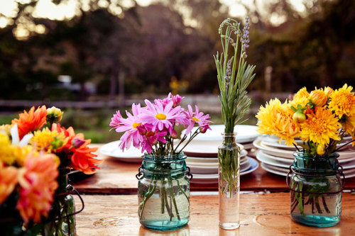 little vases & jars - so simple, fun @Beetlebung Farm - photo by Gabriela Herman  tx missmoss