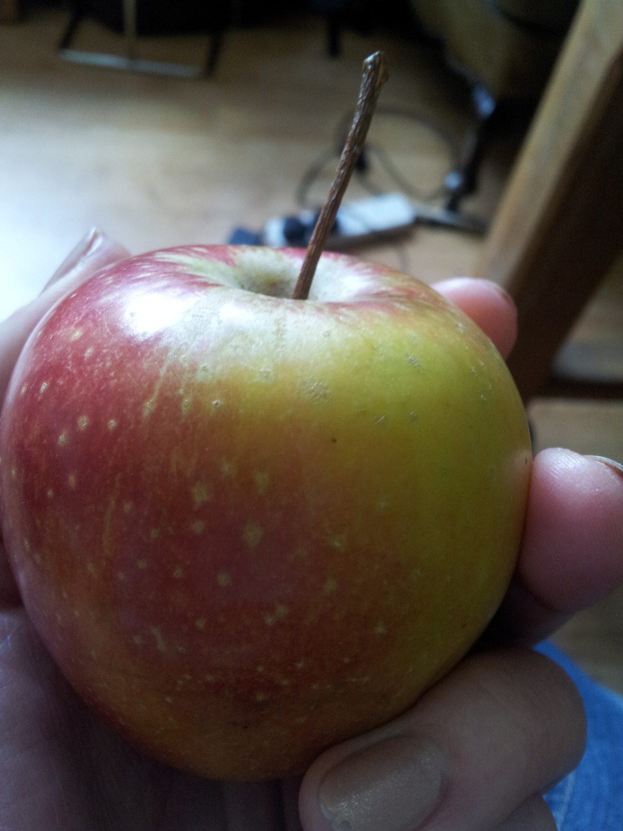 Today's apple is a Katy