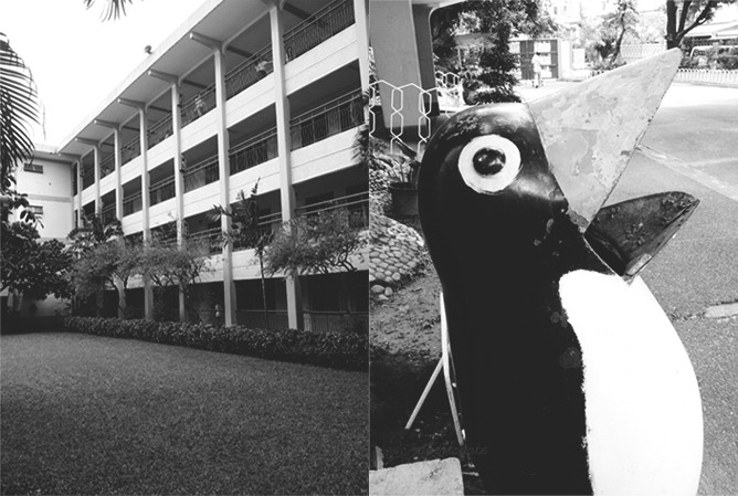 School in Black and White!  Left: HS Wing Right: Old trash bin  Taken with Samsung Galaxy SII  Post-processed with Adobe Photoshop CS3 Extended