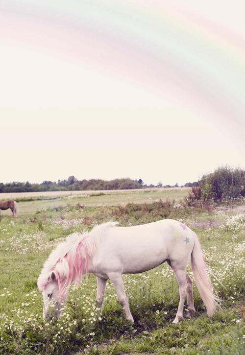 pink unicorn fluff
