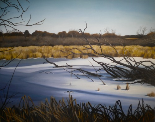 "The Volo Bog in February, 2012, oil on canvas, 38"" x33"" *Available Buy the original painting through The Golden Triangle here: The Golden Triangle For prints, purchase through my etsy shop here:  http://www.etsy.com/listing/116623589/art-print-8-x-10-the-volo-bog?ref=pr_shop"
