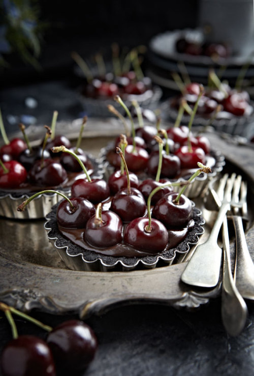 gastrogirl:  no-bake oreo chocolate cherry tarts.