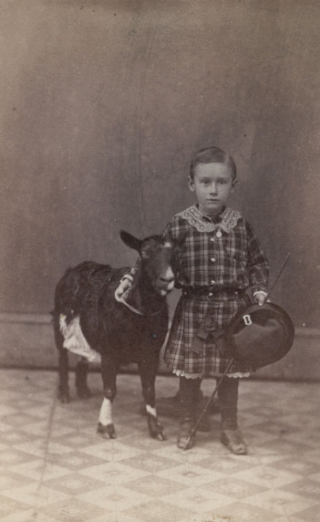 tuesday-johnson:  ca. 1865, [albumen portrait of a young boy with a goat], J.B. Gibson via Charles Schwartz Photography