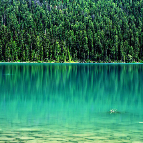 Emerald Lake Yoho National Park { Canada } (by Ania.Photography ✿ busy)