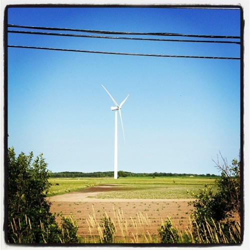 Green Economy. Garden Peninsula. #puremichigan  (Taken with Instagram)