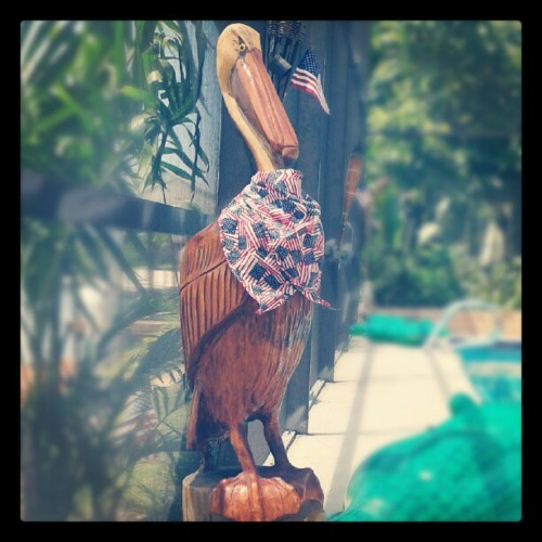 Badass Pelican. Mericuh. (Taken with Instagram)