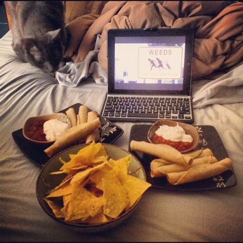 Good Start To Saturday: Cat, Vegan Chix Taquitos & Weeds. #caturday #cats #catsofinstagram #catsofig #igcats #instacats #ilovemycats #neko #katze #foodporn #vegetarian #weeds    (Taken with Instagram)
