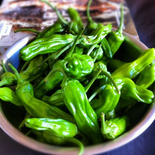 good find at farmers market = shishito peppers (Taken with Instagram)