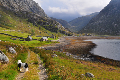 absolutescotland:  A walk to the bothy by ladydlt on Flickr.