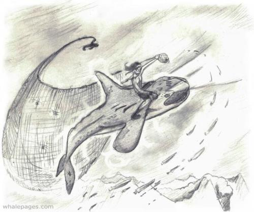 Raeto and his Whale, Vancu, in the graphic story Etchings of Raeto (via Day 1: Paradox | Whale Pages {Beta})