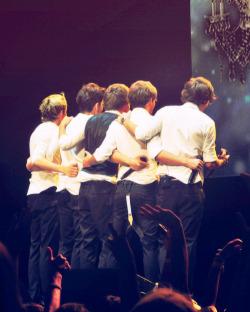 louis tomlinson Harry Styles One Direction Zayn Malik liam payne Niall Horan MY EDIT 500 lt lp hs nh zm