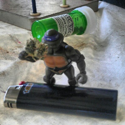 elmalo21:  #weed #teenage #mutant #ninja #turtle #bic #lighter #highlife #tmnt (Taken with Instagram)  http://animalsgettinghigh.tumblr.com