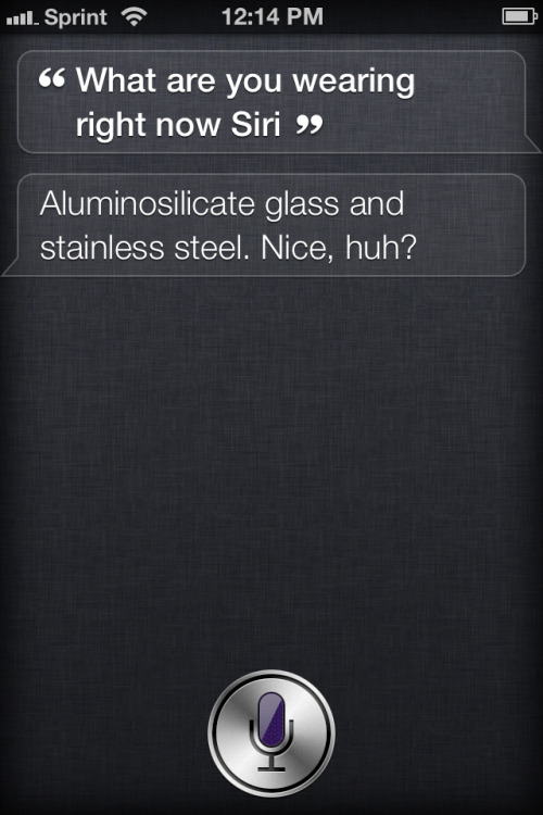 For @puffle-huff :-)  Siri's freaking hysterical.