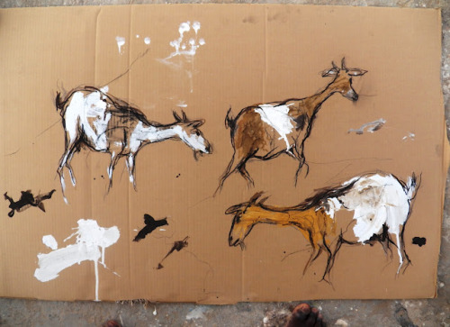 I kinda love these sketches of goats by Oumar Ball. I think it's because his rough style and the fact that they're on cardboard make them look like cave paintings. (via Chèvres)