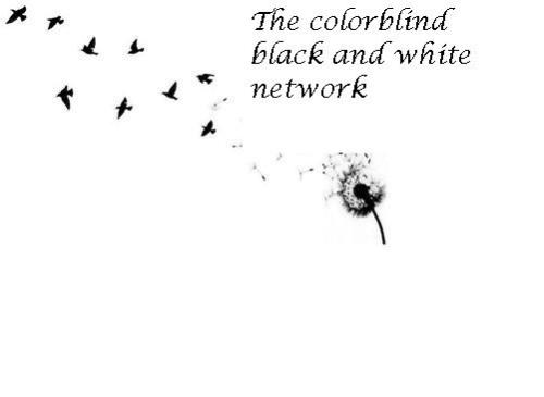 beoriginallyunique:  THE COLORBLIND BLACK AND WHITE NETWORK (the text will not show up and ruin your fab blog) The colorblind network will be comprised of a select group of people who run black and white blog and post quality pictures *IF YOUR BLOG IS TRIGGERING ( self harm, eating disorders,and suicide) YOU WILL NOT BE CHOSEN  To be considered: You must be following me- beoriginallyunique ,her- justtfuckingbreathe WE WILL CHECK!!! Reblog this at least once(more than once will increase your chances) (don't like it or we won't like you) You must be funny You must run a B&W blog  Once chosen you will: Become our friend 5ever Be in the network, duh We can do group promo's and whatnot If chosen you must have a link to the network on your blog We will choose blogs on the 12th of July or until we believe this reached a suitable amount of notes GOOD LUCK!
