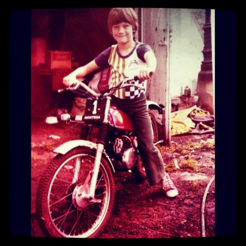 Born to be wild - Our Champion Andy, aged 9. Photo courtesy of Vashti Whitfield