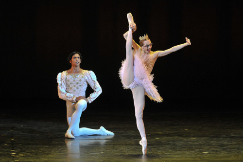 From the very humorous, Le Grand Pas De Deux